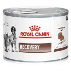 Royal Canin Veterinary Diet Canine Recovery Hrană umedă