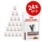 Royal Canin Veterinary Diet -säästöpakkaus 24 x 100 g / 85 g