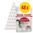 Royal Canin Wet Cat Food Multibuy 48 x 85g
