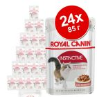 Royal Canin 24 x 85 г консервирана храна бонус опаковка