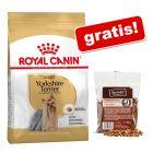 Royal Canin Yorkshire Terrier Adult + Chewies Mini kosteczki, półwilgotne, drób, 125 g gratis!