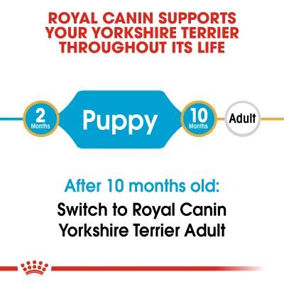 Royal Canin Yorkshire Terrier Puppy / Junior