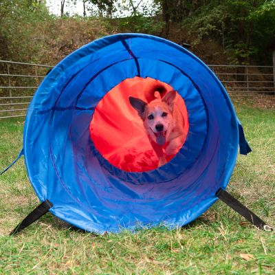 Sac tunnel Agility pour chien Fun & Sport