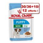 Sachets fraîcheur Royal Canin 30 / 36 + 10 / 12 offerts !