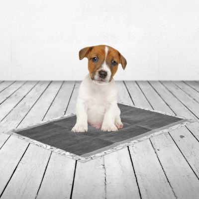 Savic Puppy Trainer Pads Met Active Koolstof