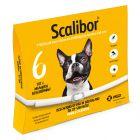 Scalibor® Protectorband voor Kleine en Middelgrote honden