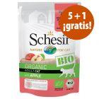 Schesir Bio bolsitas 6 x 85 g en oferta: 5 + 1 ¡gratis!