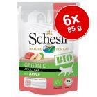 Schesir Bio Buste 6 x 85 g