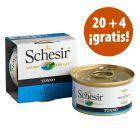 Schesir en gelatina 24 x 85 g en oferta: 20 + 4 ¡gratis!