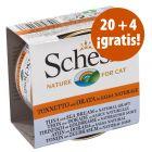 Schesir Natural en salsa 24 x 70 g en oferta: 20 + 4 ¡gratis!