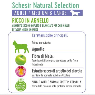 Schesir Natural Selection Adult Medium & Large con Agnello