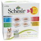 Schesir Natural Selection Probierpakete 4 x 150 g Nassfutter