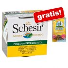 Schesir 24 x 150 g conserve + Barkoo Snackuri dentare 7 buc gratis!