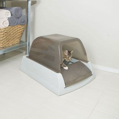 ScoopFree Cat Litter Box