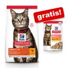 Secco Hill's Science Plan + 12 x 85 g umido in busta gratis!
