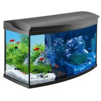 Set Acquario Tetra AquaArt  Evolution Line LED 100 l