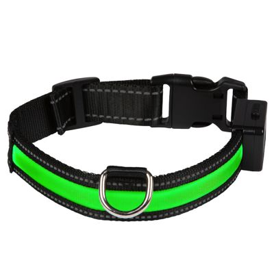 Set Collare luminoso a LED Eyenimal - verde + blu