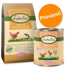 Set prova! 1,5/10 kg secco Lukullus Junior Pollo & Salmone + 6 lattine umido