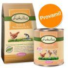 Set prova! 1,5 kg secco Lukullus Junior Pollo & Salmone + 6 x 400 g umido
