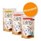 Set prova misto! Catessy Snack Croccanti 3 x 65 g