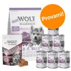 Set prova misto! Little Wolf of Wilderness Junior secco + umido + snack