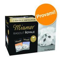 Set prova misto! Miamor Ragù  Royal Kitten 12 x 100 g