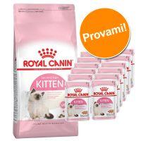 Set prova misto! Royal Canin Kitten 400 g secco + 12 x 85 g umido