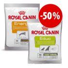 Set prova misto! Snack Royal Canin 10 x 50 g