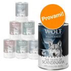 "Set prova misto Wolf of Wilderness ""The Taste Of"""