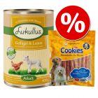 Set prova misto: 6 x 400 g Lukullus + 200 g Cookie's