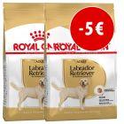 Set risparmio! 2 x Royal Canin Breed