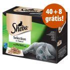 Sheba comida húmida 48 x 85 em promoção: 40 + 8 grátis!