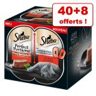 Sheba Perfect Portions pour chat : 40 x 37,5 g + 8 x 37,5 g offerts !