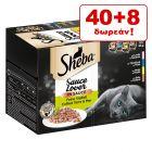 40 + 8 Δωρεάν! Sheba Δισκάκια 48 x 85 g