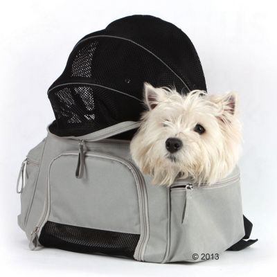 Sightseer Backpack Pet Carrier