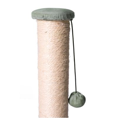 Simon's Cat Scratching Post