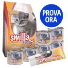 Smilla Kitten Starter Set