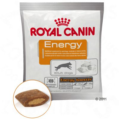 Snack Royal Canin Energy
