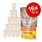 Soupe Josera 16 x 70 g pour chat
