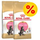 Sparepakke: 2 poser Royal Canin Breed Kattefoder