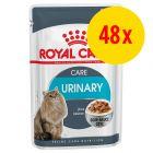 Sparepakke: 48 x 85 g Royal Canin vådfoder til katte
