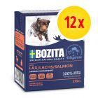 Sparpack: Bozita Chunks in Jelly 12 x 370 g