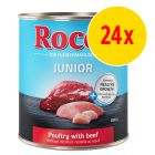 Sparpack: Rocco Junior 24 x 800 g