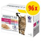Sparpack: Perfect Fit 96 x 85 g