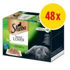Sparpack: Sheba Variationer 48 x 85 g i portionsform