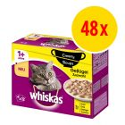 Sparpack: Whiskas Creamy Soup 48 x 85 g