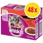 Sparpack: Whiskas Junior portionspåse 48 x 85/100 g