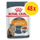 Sparpaket: Royal Canin 48 x 85 g