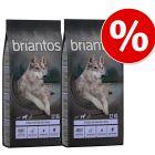 Sparpaket Briantos 2 x Großgebinde