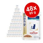 Sparpaket Royal Canin Veterinary Diet Feline 48 x 100 g / 85 g